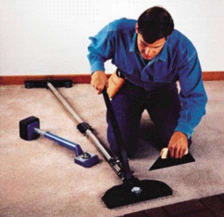 where to find carpet stretcher power in chico